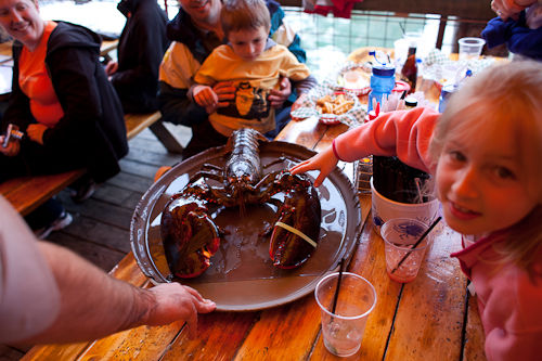 Fooding on the Road - 10 Pound Lobster at the Barking Crab ...